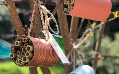 🐝💛 Hôtel pour abeilles sauvages à faire avec les enfants!