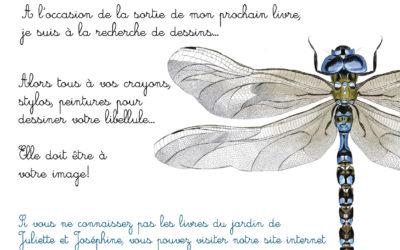 🖍 Dessine une libellule…
