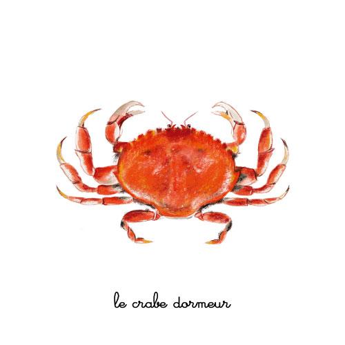le crabe dormeur illustration