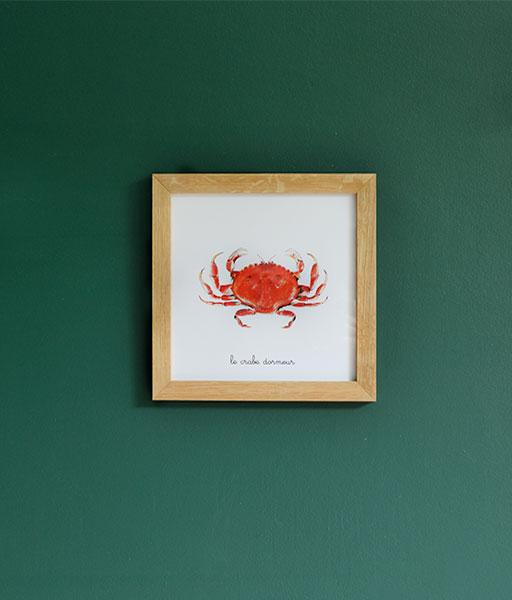 le crabe dormeur